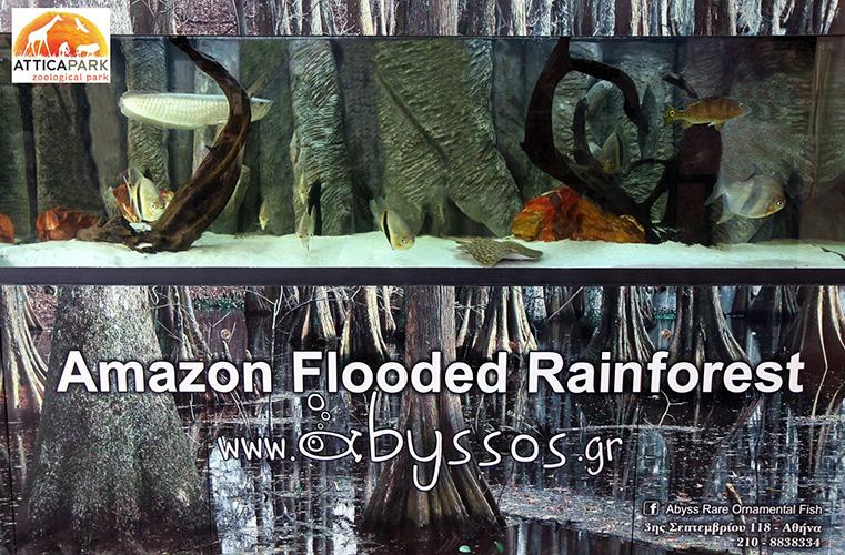 Abyssos Δημιουργείες Ενυδρείων