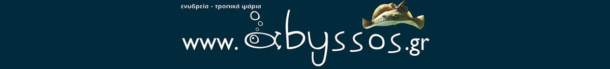 Abyssos.gr